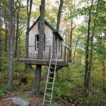 Tree House Ext 3