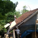 New Roof going on.